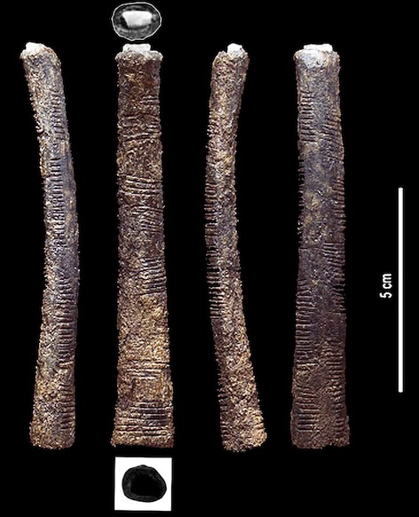 The Ishango bone. Based upon an image from the Roy