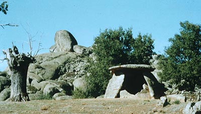 The typical landscapes where seven-stone antas can